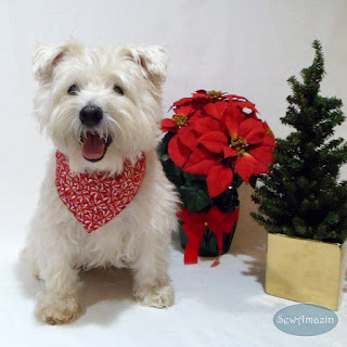 Peppermint Candy Christmas Dog Bandana