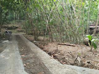 Tanah Dijual Butuh Uang Kulonprogo di Karangsari Dekat Bandara Jogja 4