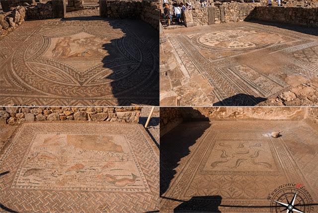 mosaicos Volubilis