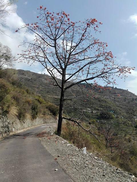 village motna, tehri garhwal