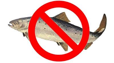Alergi ikan