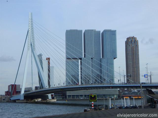 Puente de Erasmo (Erasmusbrug) y Der Rotterdam