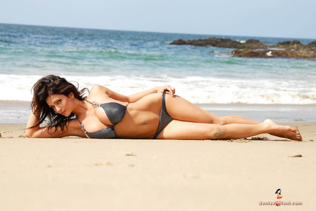 Denise-Milani-Beach-Silver-bikini-hottest-photoshoot-pics-28