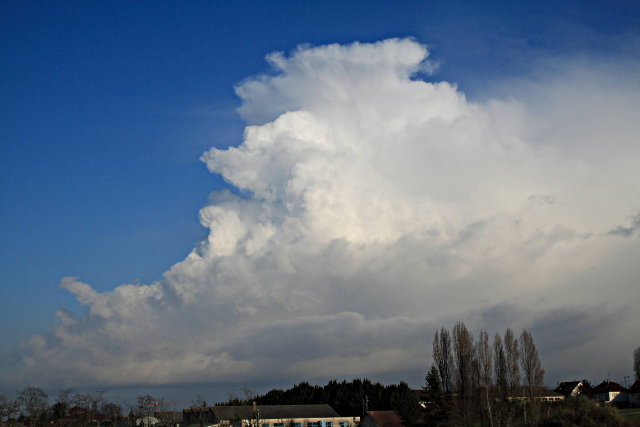 Cumulus congestus (mars 2007)