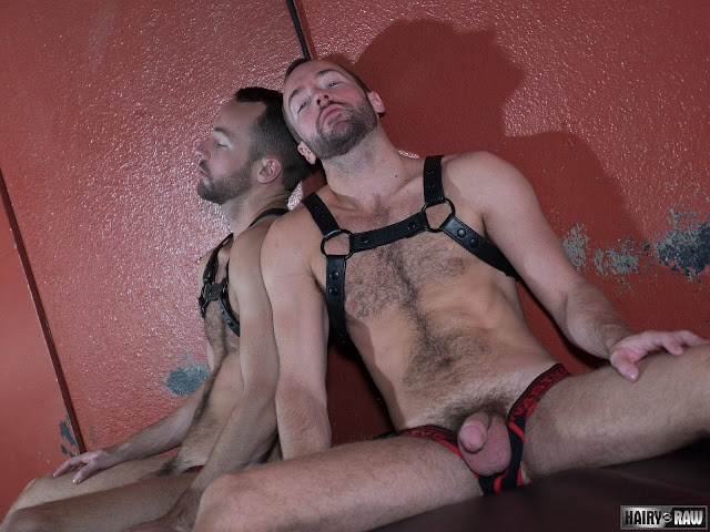Hairy and Raw - Alex Hawk and Dino DeFrancesco