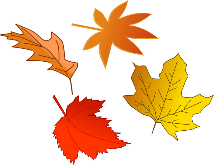 free autumn clipart images - photo #9