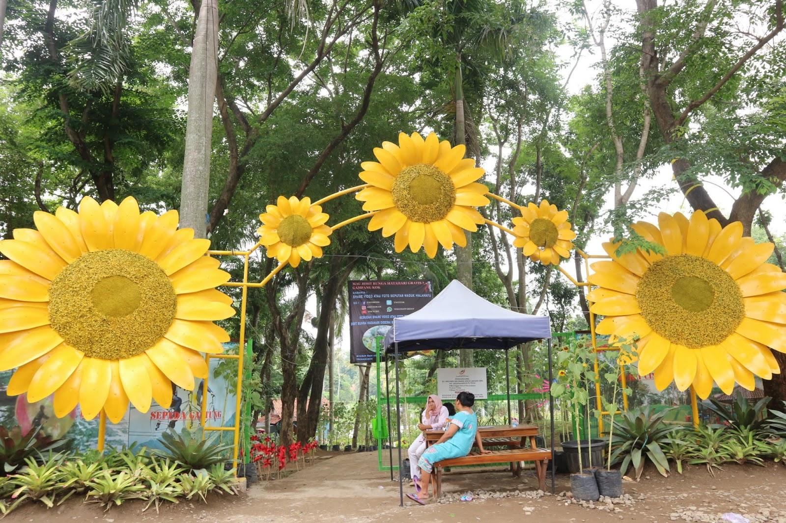 Pesona Desa Wisata Malahayu Dalam Ekowisata Dan Edukasi