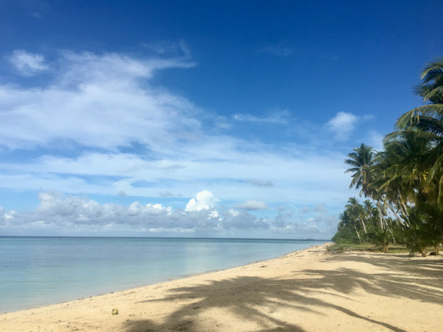 You will certainly love the beach in Elegant Beach Resort in San Remigio, a town in northern Cebu. It's white powdery sand will make you want to sit right away upon seeing it while enjoying the beautiful scenery