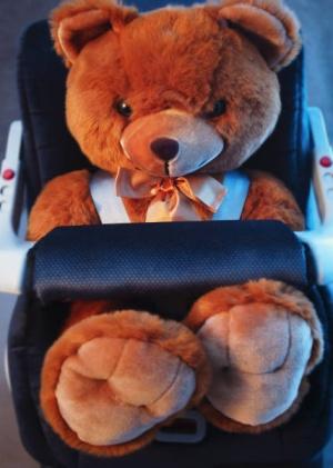 ours en peluche dans un siège enfant de voiture