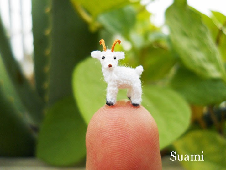 miniature animals for sale-1