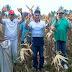 Kunjungi Enam Desa Sengketa untuk Panen Jagung, Danny Missy Dilempar