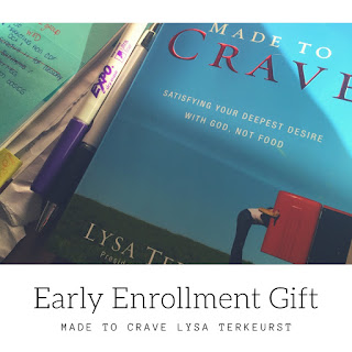 Lysa Terkeurst, Made to Crave Support, Made to Crave book, Katy Ursta, One Fit Fighter