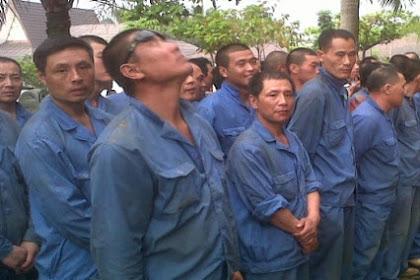 Lindungi Pribumi, Pemprov Sumbar Tidak Kasih Izin Pekerja Asing di Wilayahnya