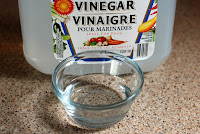 White Vinegar Pet Stains