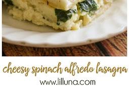 Cheesy Spinach Alfredo Lasagna Recipe