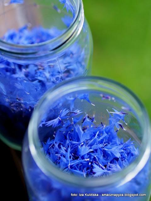 chaber blawatek, chabry blawatki, lemoniada chabrowa, napoj blawatkowy, wino modrakowe, winko chabrowe, kwiaty jadalne, blekit pruski