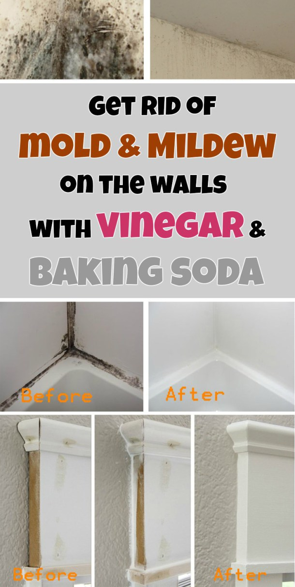 bathroom cleaning tips bathroom cleaning cleaning hacks bathroom hacks diy diy - Bathroom Cleaning Hacks