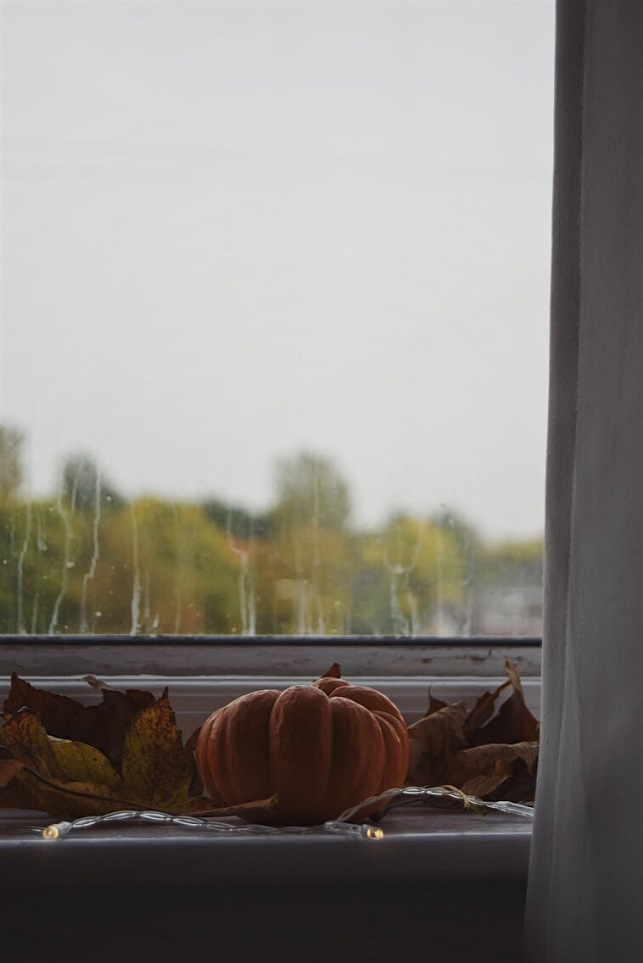 Autumn window sill view with pumpkin and leaves