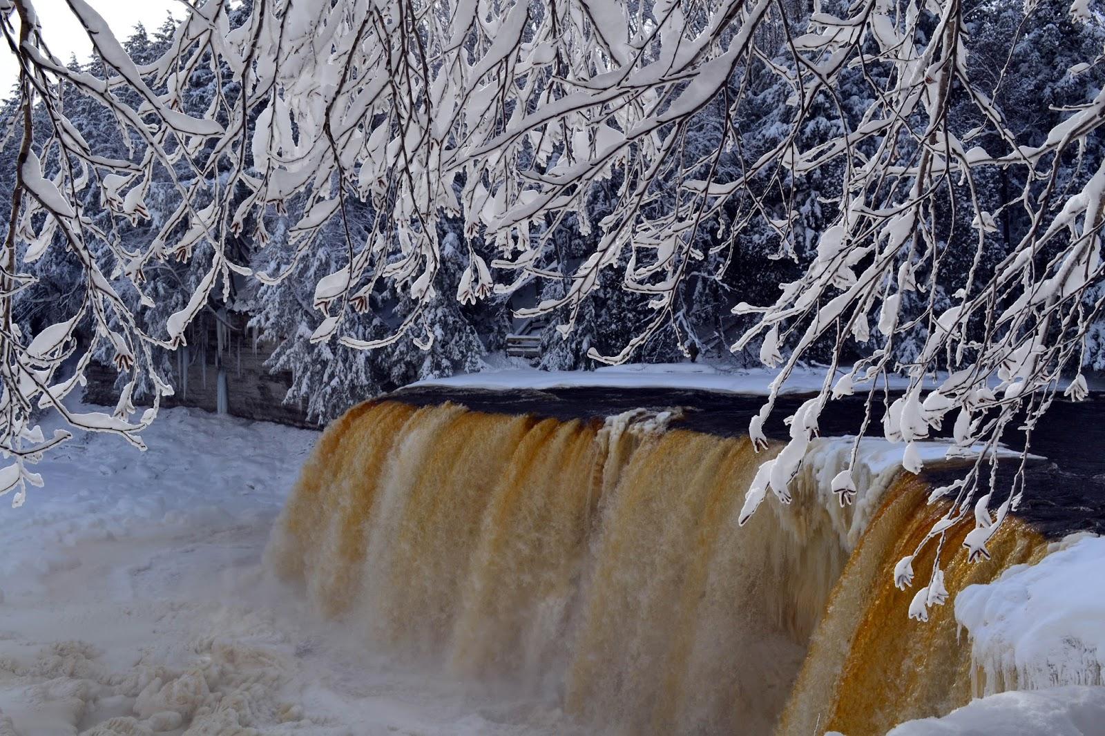 Showcasing the Michigan DNR: Winter fun at Michigan State ...
