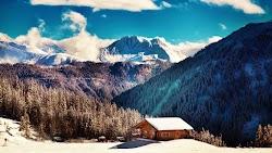 Winter Nature in Tirol 4K