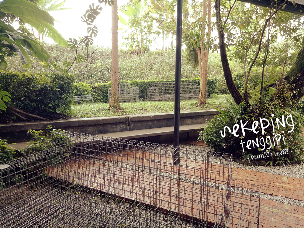 Sekeping Tenggiri Garden