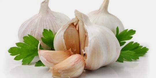 obat sakit gigi tradisional dengan bawang putih
