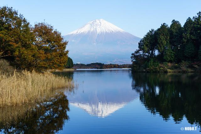 田貫湖・展望デッキからの富士山