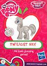 My Little Pony Wave 14B Twilight Sky Blind Bag Card