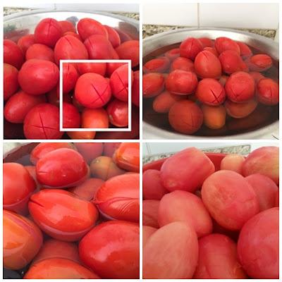 molho de tomate fácil