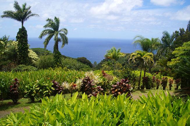 Shot on location - Films and TV-series: Keopuka Rock, Maui HI, USA