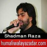http://www.humaliwalayazadar.com/2014/02/shadman-raza-nohay-2015.html