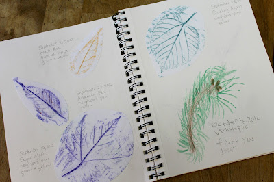 50+ Items to add to a Nature Notebook