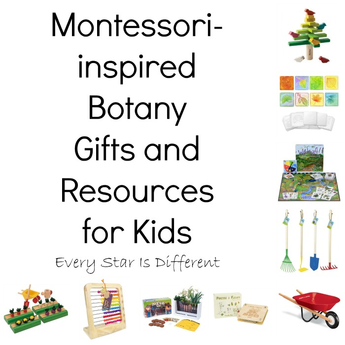 Montessori-inspired Plant Gifts and Resources for Children