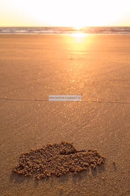 Rakkautta rannalla Goan