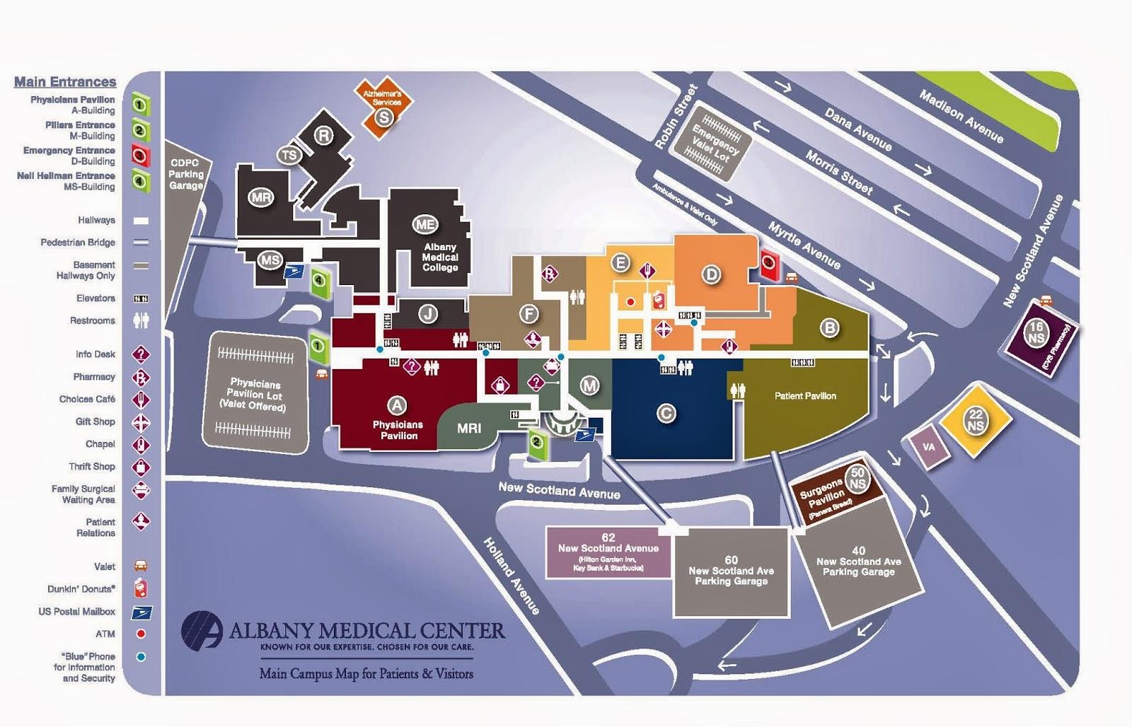 Information Design Albany Medical Center