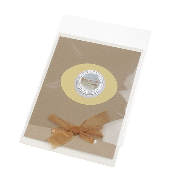The evolution of greeting card packaging clearbags a need for a bag that would also allow the card to be pulled in and out of the bag without having to open it thus the no flap bag was born m4hsunfo