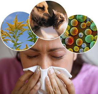 Allergy kitni tarah ki hoti hain? Allergy se bachne ke liye kya karna chahiye?