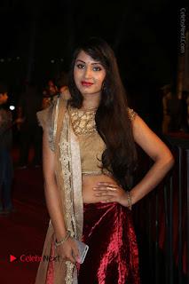 Actress Vennela Stills in Lehenga Choli at Gemini TV Puraskaralu 2016 Event  0032.JPG