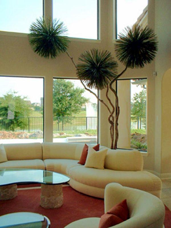 Intira design using indoor plants tastefully - Decoracion d interiores ...