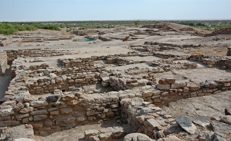 fresh excavations at largest harappan site