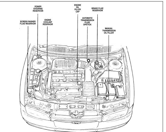 Manuales de mecánica y taller: Ford Mondeo 93 al 2000