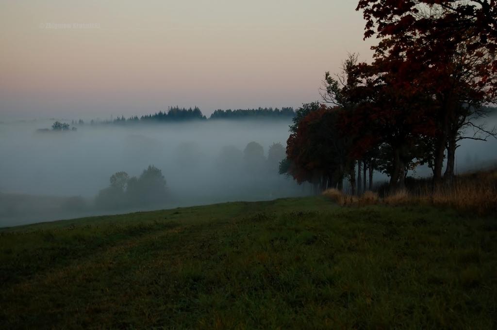 Mgły na warmińskich polach