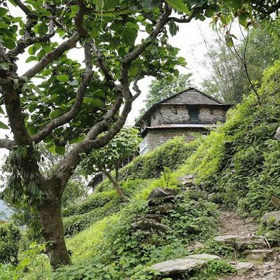 Casa en el camino del trekking de Ghandruk