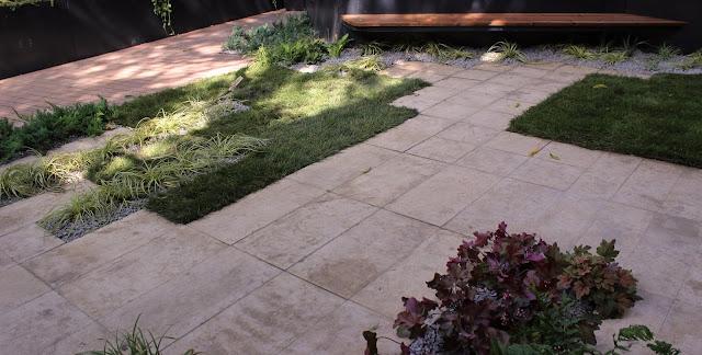 plante de umbra carex heuchera, gradina moderna, firma amenjari gradini, design gradina, firma peisagistica