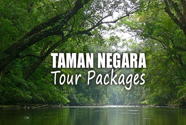 Tour Packages for Taman Negara