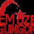 cemozergungor.com