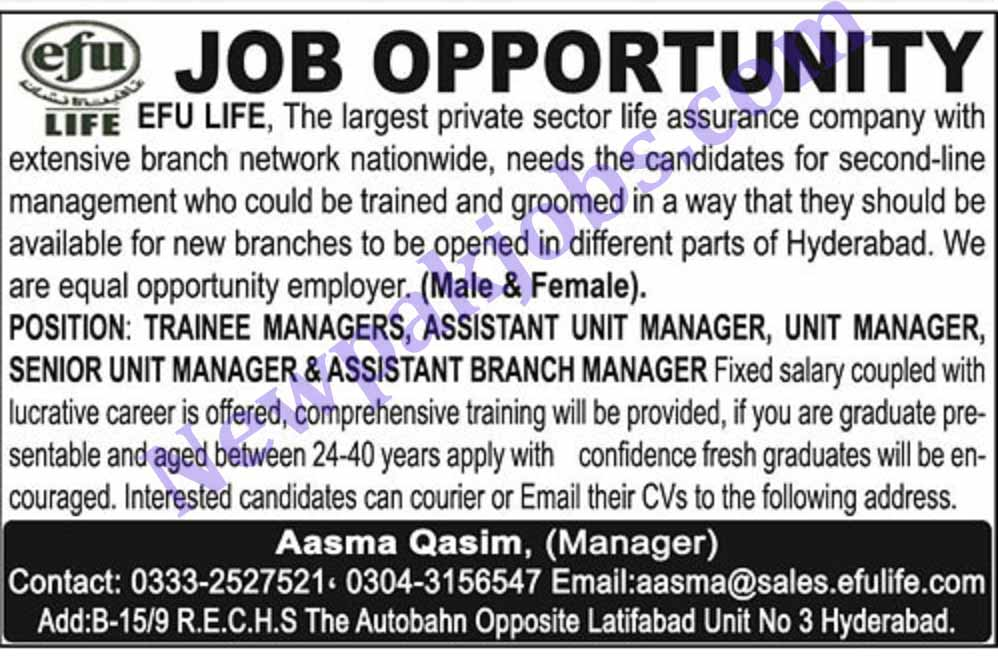 Jobs-in-EFU-Life-Assurance-Hyderabad
