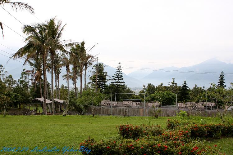 池上蠶桑休閒農場|台東池上親子遊景點~近池上伯朗大道