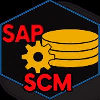 Learn SAP SCM