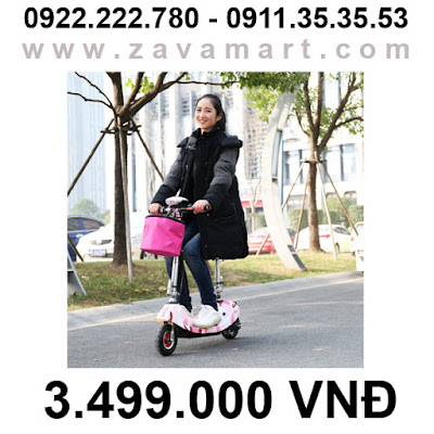 Xe điện mini E-scooter là gì?